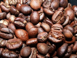 Roasted Bean Kopi Luwak